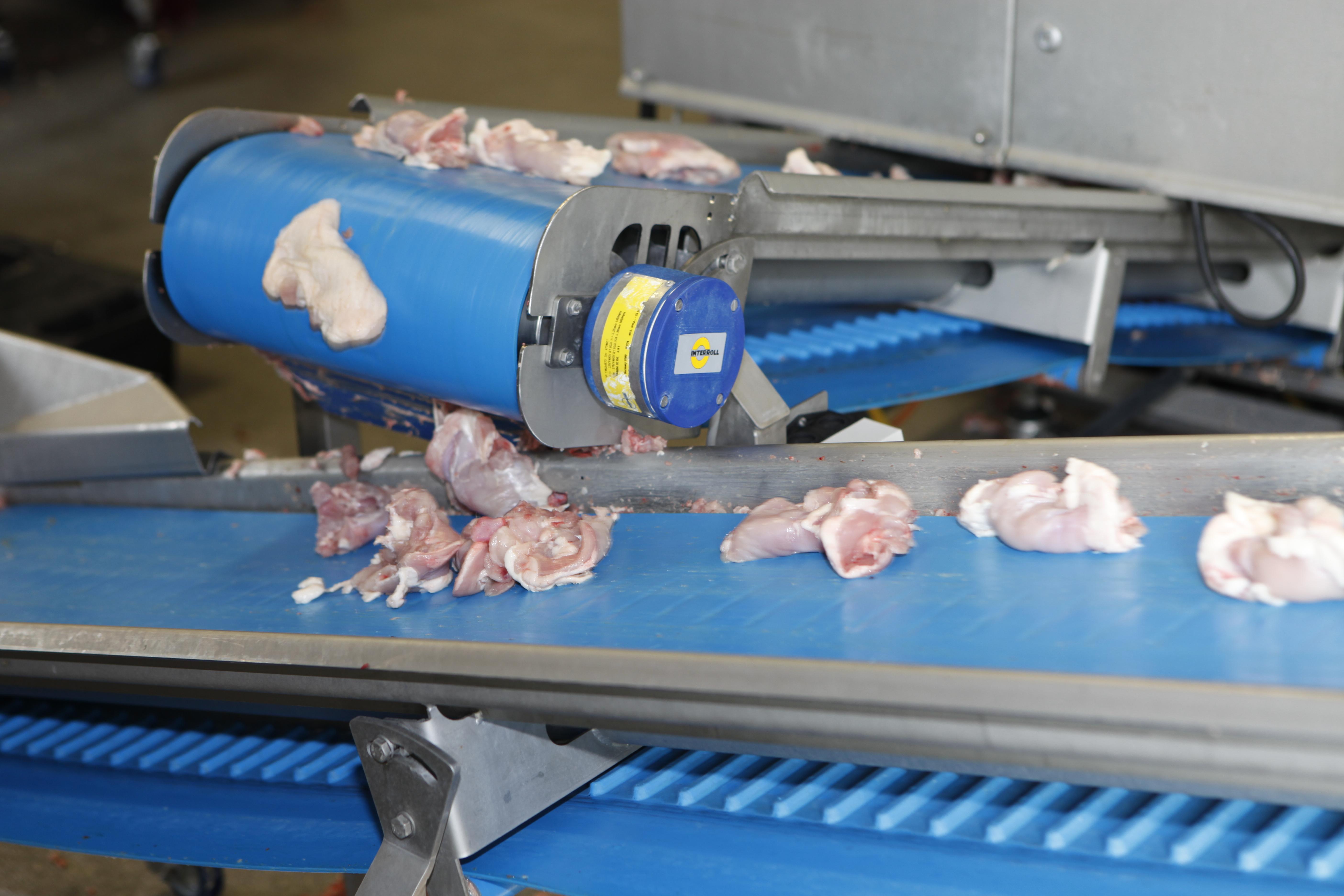 Инженерни ремъци за Месна и Рибна промишленост